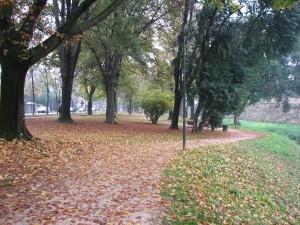 Parc Treviso